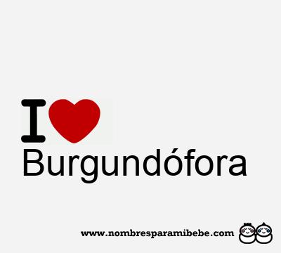 Burgundófora