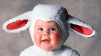 bebe-oveja